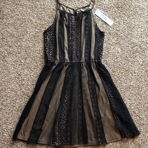 Lace Black and Gold Dress